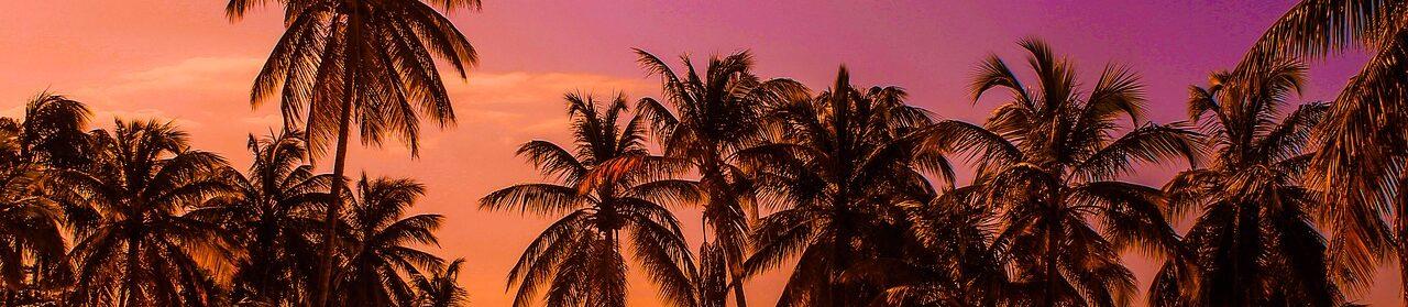 caribbeanclimateblog.com